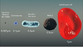 a diagram of particles that is filtered by a facemask: Red Blood Cell, PM2.5, Bacillius Bacteria, and Coronavirus